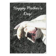 Happy Mother's Day White boxer greeting card