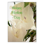 Happy Mothers Day White Flowers card