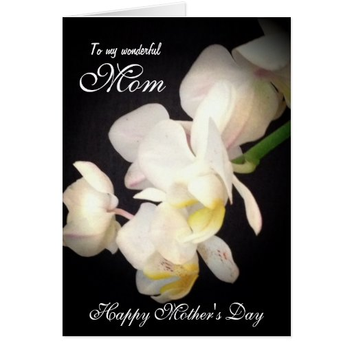 Happy Mother's Day White Orchid Card