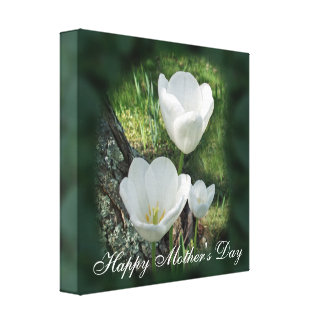 Happy Mother's Day White Tulips Canvas Print