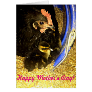 Happy Mother's Day! With Hen and Baby Duckling Card