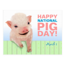 Happy National Pig Day! Postcard