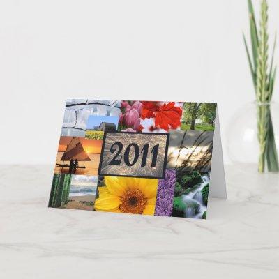 http://rlv.zcache.com/happy_new_year_2011_card-p137139814768537757q53o_400.jpg