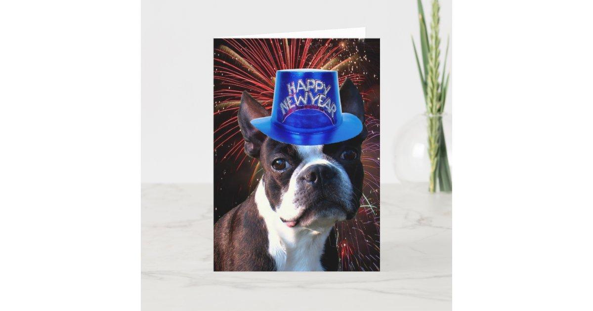 Happy New Year Boston terrier greeting card   Zazzle.com