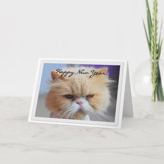 Happy New Year Persian Cat Humor Holiday Card   Zazzle.com