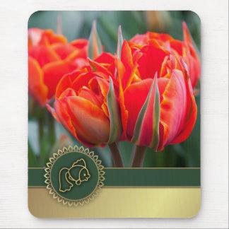 Happy Nowruz. Persian New Year Gift Mousepad