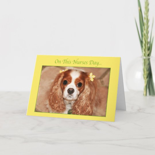 Happy Nurses Day Cavalier King Charles Spaniel Card
