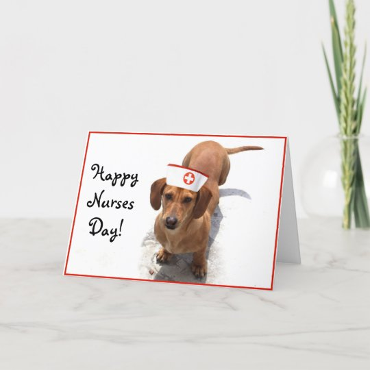 Happy nurses day dachshund greeting card zazzle happy nurses day dachshund greeting card m4hsunfo