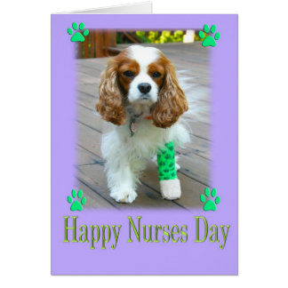 Happy Nurses Day With Spaniels Bandaged Foot Greeting Card
