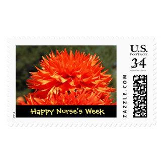 Happy Nurse's Week Postage Stamps Cards Invitation