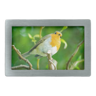 Happy Orange Robin with Funny Eyes in Leafy Tree Belt Buckles