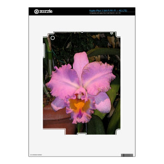 Happy Orchid! iPad 3 Decal