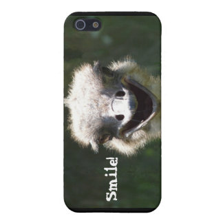 Happy Ostrich- Smile! iPhone SE/5/5s Cover