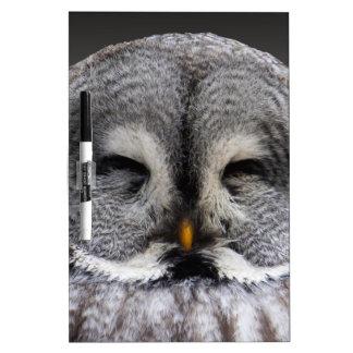 Happy Owl Dry Erase Board