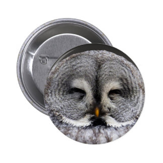 Happy owl pinback button