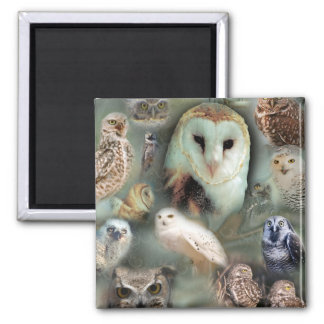 Happy Owls 2 Inch Square Magnet