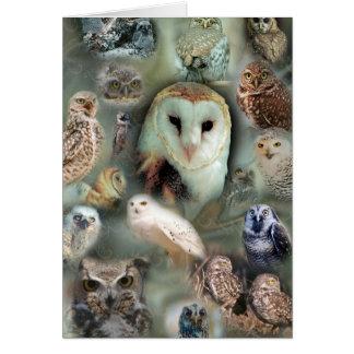 Happy Owls Card