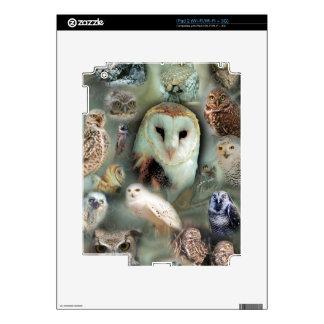 Happy Owls iPad 2 Decals
