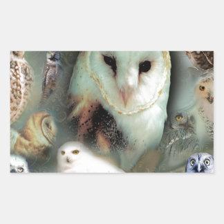 Happy Owls Rectangular Sticker