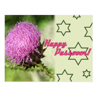 Happy passover star of david pink flower spring postcard