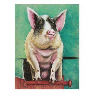 happy pig animal painting postcard