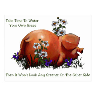 Happy Pig: Grass Not Greener On Other Side: Art Postcard
