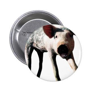 Happy Pig Long Leg Funny Pinback Button