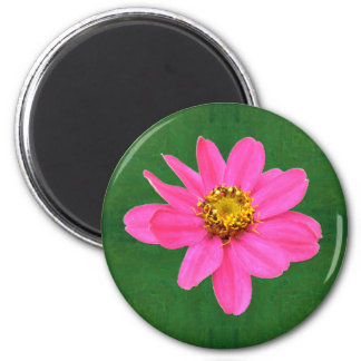 Happy Pink Zinnia Blossom Magnets