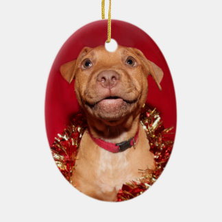 Happy pitbull puppy Christmas Ceramic Ornament