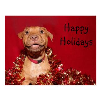 Pitbull Christmas Postcards   Zazzle