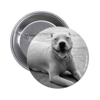 Happy pitbull round button