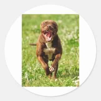 Happy Pittie Classic Round Sticker