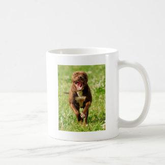 Happy Pittie Coffee Mug