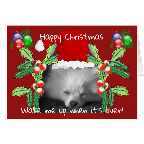 Happy Pomeranian Puppy Christmas Card