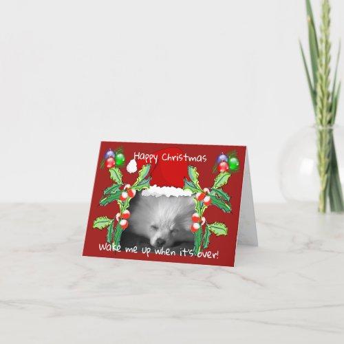 Happy Pomeranian Puppy Christmas Holiday Card