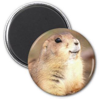 Happy Prairie dog magnet