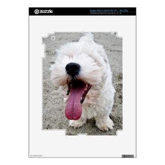 Happy Puppy white dog, malteese, maltipoo. Decal For iPad 3