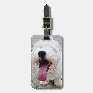 Happy Puppy white dog, malteese, maltipoo. Luggage Tag