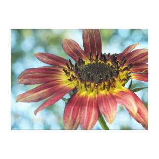 Happy Red Sunflower Wrapped Canvas Print