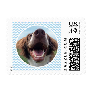 Happy Rescue Dog Blue Chevron Postage