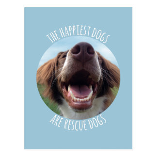 Happy Rescue Dog Post Card