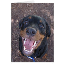 Happy Rottweiler Puppy Father's Day Card