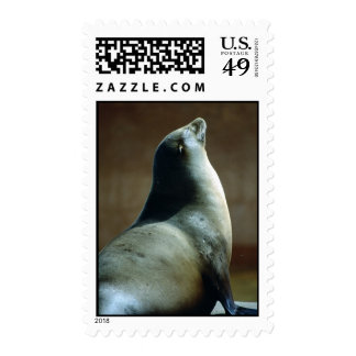 Happy Seal Stamp