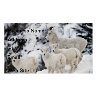 Happy Sheep Family Double-Sided Standard Business Cards (Pack Of 100)