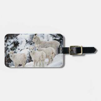 Happy Sheep Family Travel Bag Tag