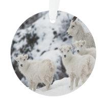 Happy Sheep Family Ornament