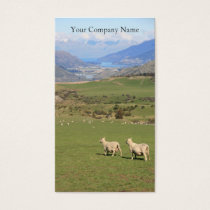 Happy Sheep in Field Photograph - Business Card