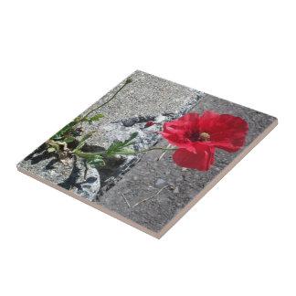 Happy Sidewalk Flower Ceramic Tile