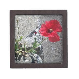 Happy Sidewalk Flower Keepsake Box