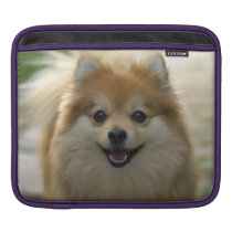 Happy small dog iPad sleeve
